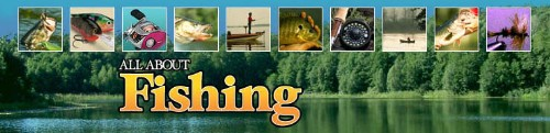 ALL ABOUT FISHING.COM